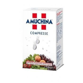 AMUCHINA COMPRESSE 1 G 24...
