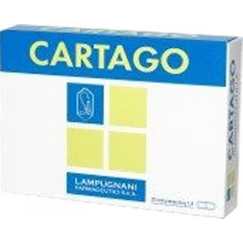 CARTAGO 20 COMPRESSE