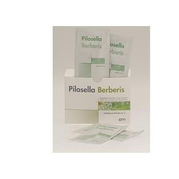 PILOSELLA-BERBERIS 30BUSTINE